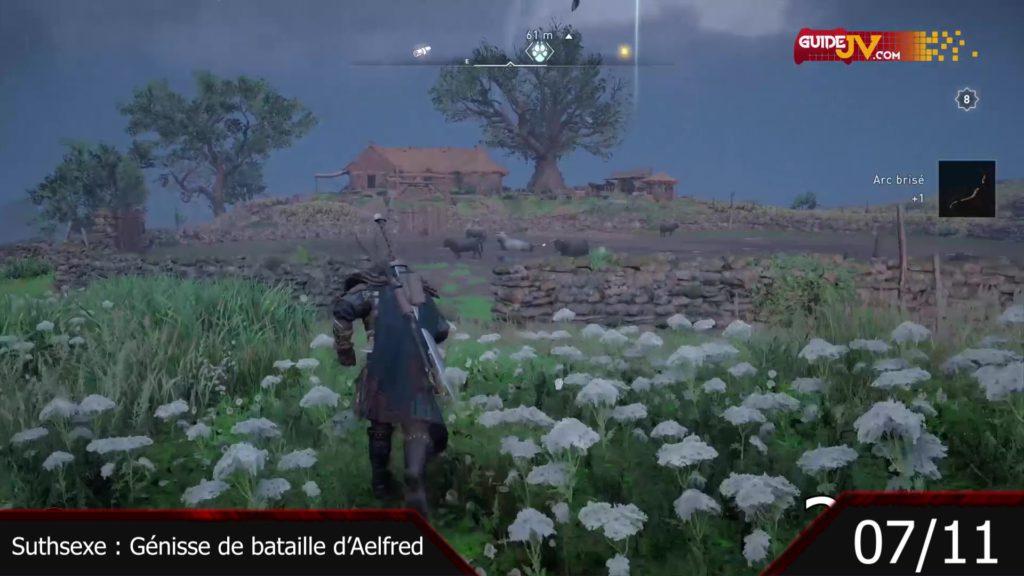 assassins creed valhalla animaux aklpha legendaire chasseur accompli