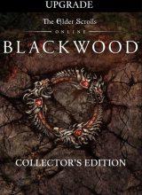 the-elder-scrolls-online-blackwood